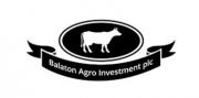 Logo: Balton.PNG