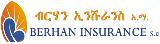 Logo: Berhan.PNG