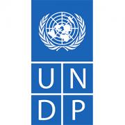 Logo: UNDP-Logo-300x300.png