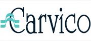 Logo: carvico_logo.PNG