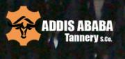 Logo: kollm.PNG